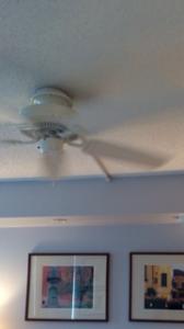 Ceiling Fan Installation Maryland