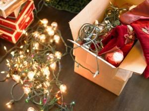 christmas-lighting-holiday-lights-baltimore