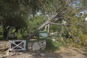 Tips and Tricks for Avoiding Electrical Damage from Windy Winter Weather