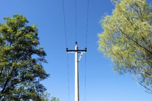 what to do for a downed power line
