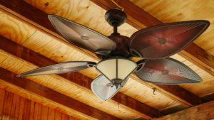 tristar electric paddle fans